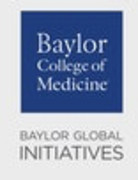 Baylor Global Initiatives